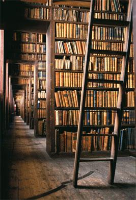 Una joven biblioteca para heredar