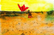 Exposición Fácil de contar. Biocollages de Angelina Delgado Librero