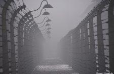 No hace mucho. No muy lejos: La exposición de Auschwitz abre sus puertas en Madrid