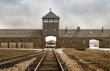 No hace mucho. No muy lejos. Reflexiones sobre la exposición de Auschwitz