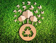 Green Friday el consumo sostenible y responsable es la alternativa al Black Friday