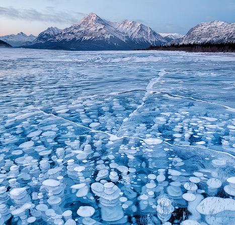 Burbujas congeladas | fotografía