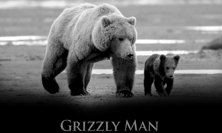 Grizzly Man | cine