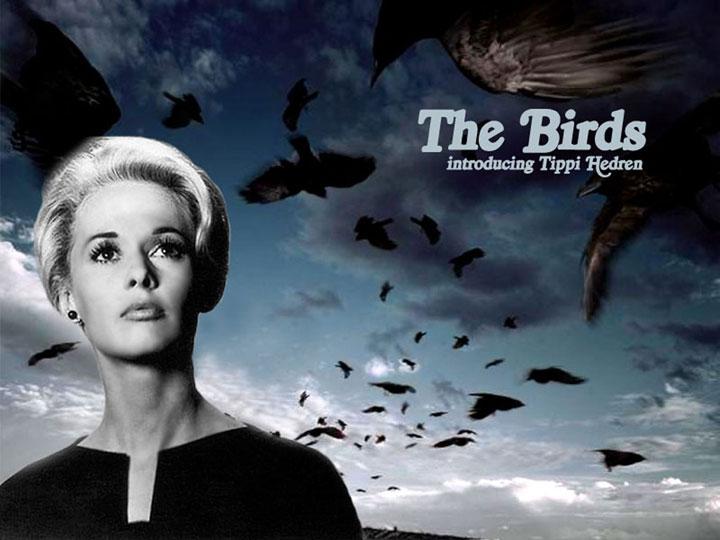 Inocentes por culpables: una lectura política de Los pájaros