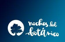 """LAS NOCHES DEL BOTÁNICO, la mejor alternativa para pasar un  """"Summer In The City"""""""