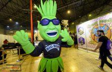 Tercera edición de Expo Cáñamo en Fibes 2017