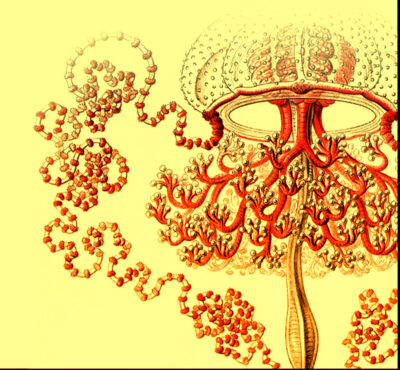 Solaris de Stanisław Lem o la imposibilidad de un contacto extraterrestre