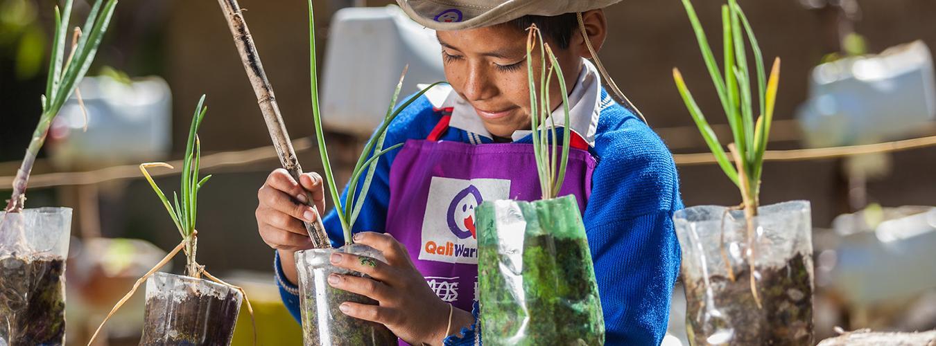 Un pequeño participa en un taller de plantación organizado por PNUD Perú y la FAO en Ayacucho, Perú. FOTO:PNUD Perú